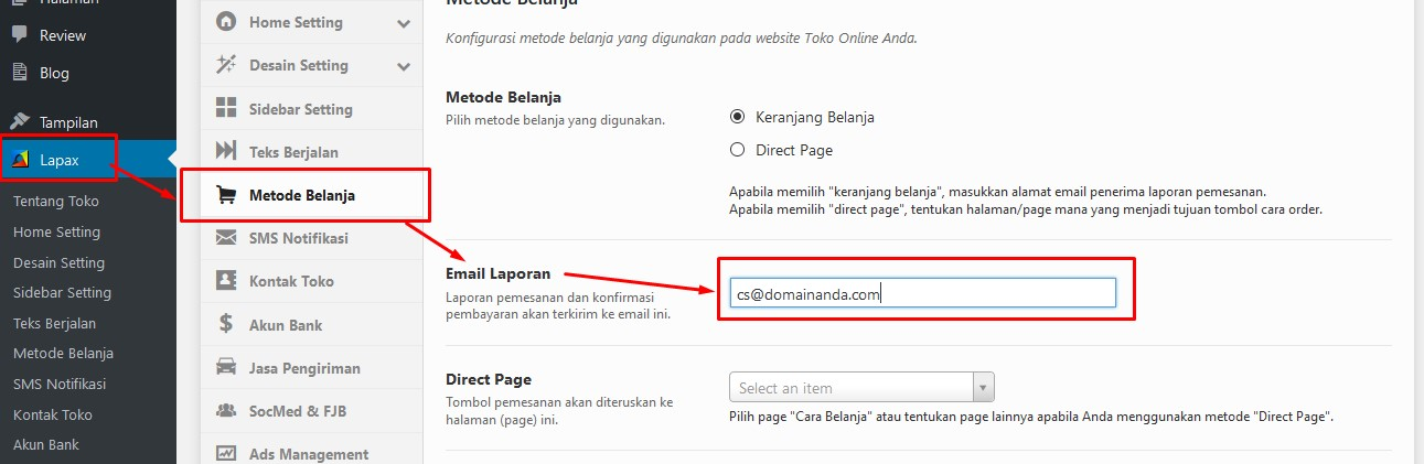 Email Laporan theme lapax